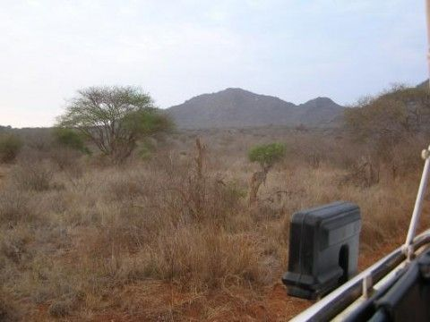 Tsavo West National Park (Veduta esterna)