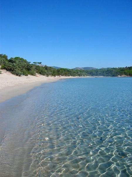 Kristallklares Wasser in der Bucht von Palombaggia