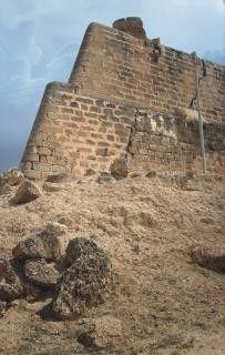 Fortaleza de Santiago de León de Araya (Vista exterior)
