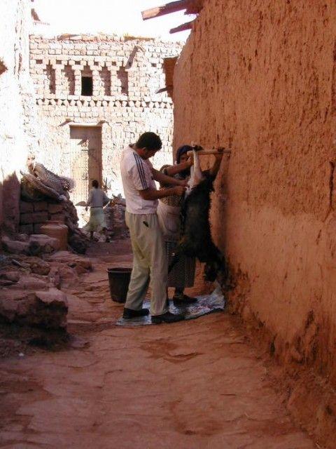 Voyage au Maroc 673131_l