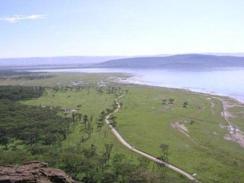 Lake Nakuru National Park (Veduta)